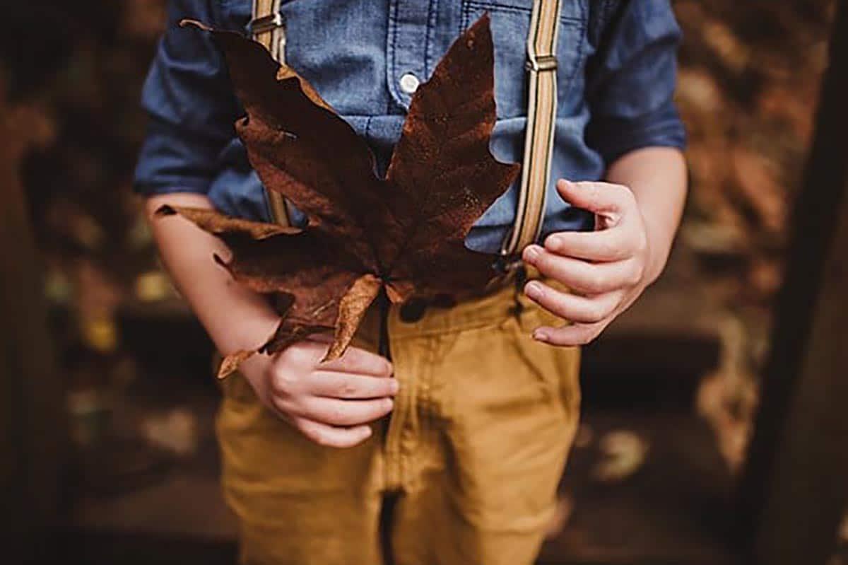 Close Up Boy Holding Leaf