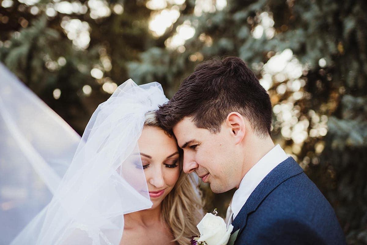 Close Up Bride Groom Veil