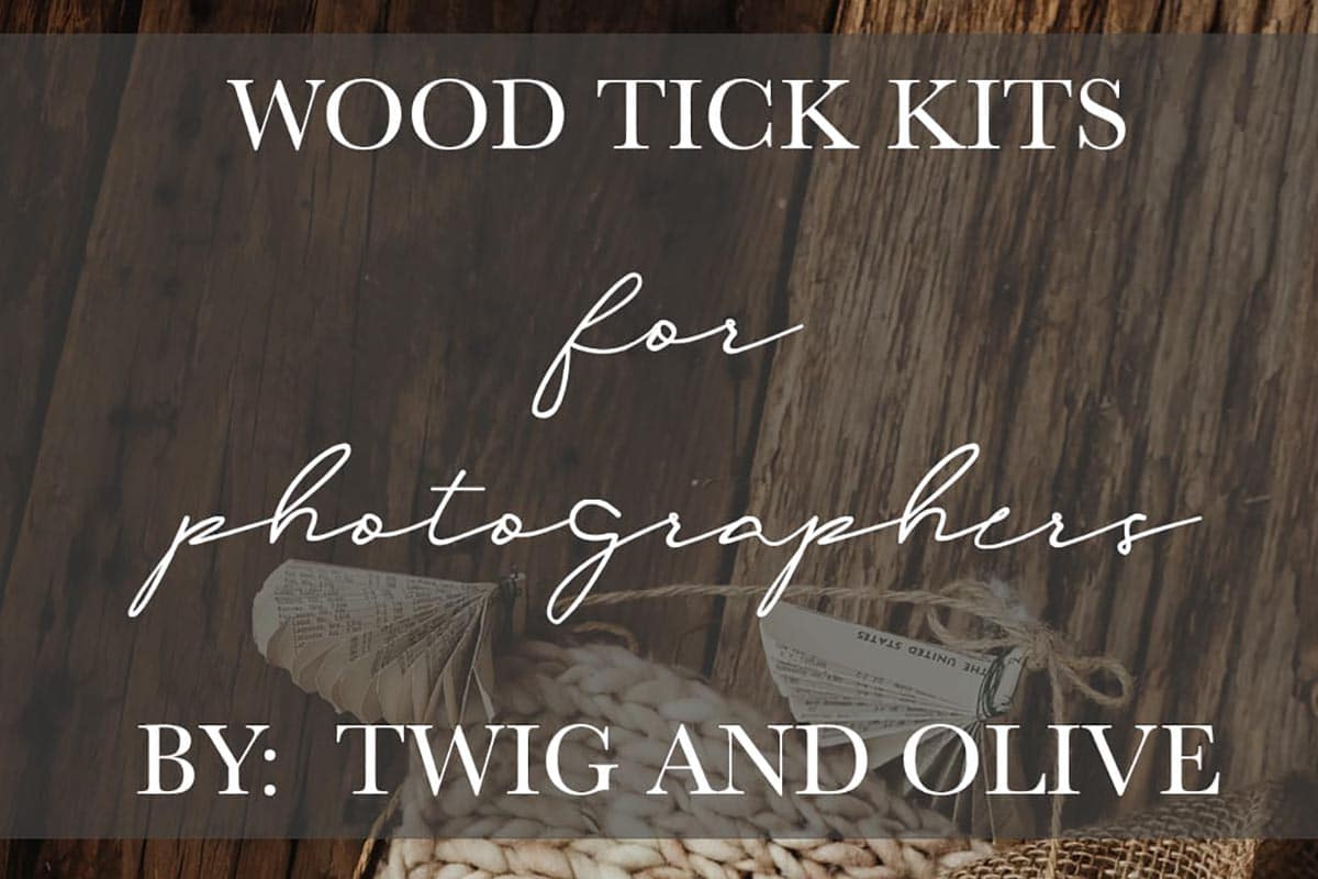 Wood Tick Kit Article