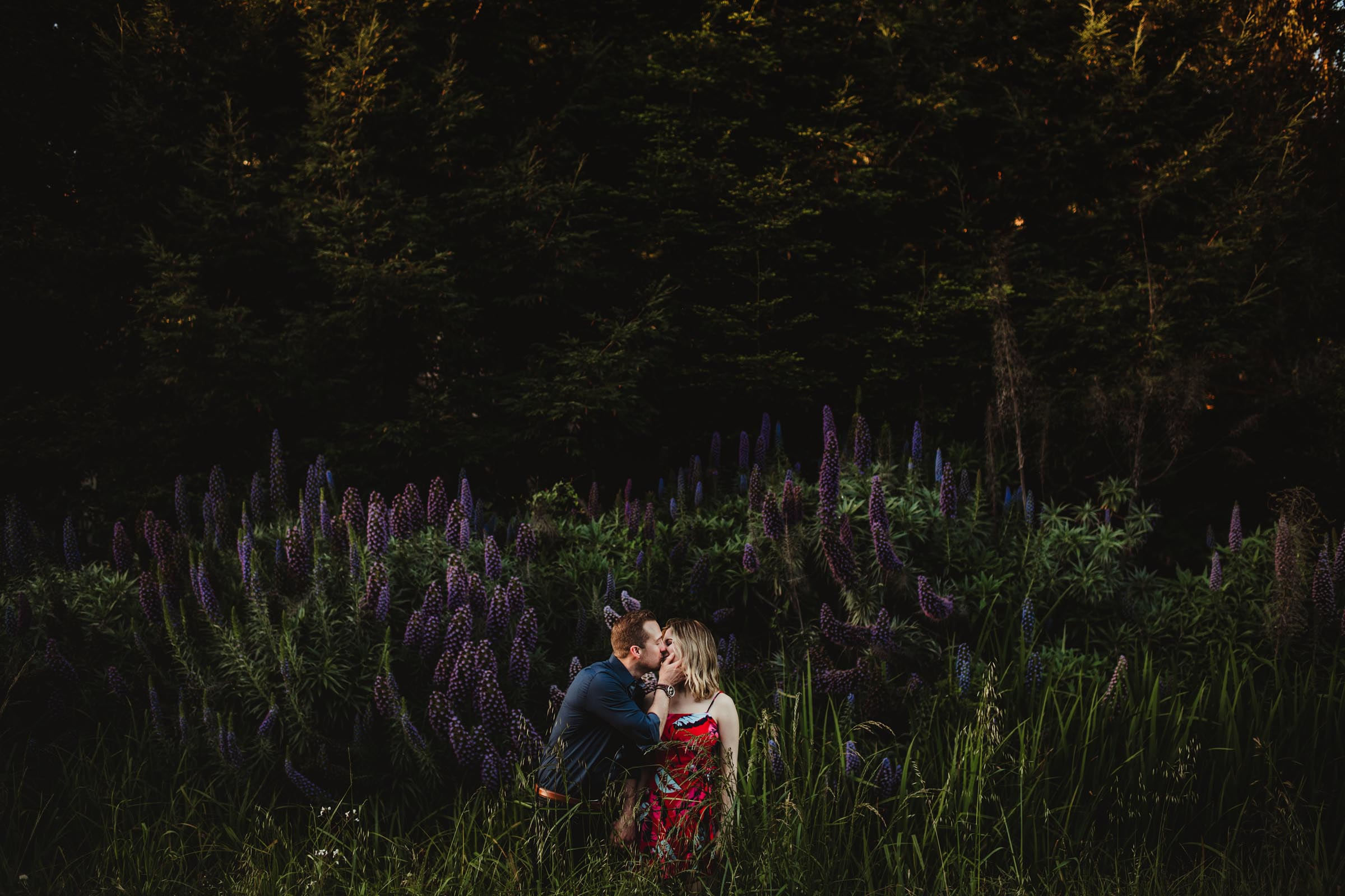 couple being affectionate in a field