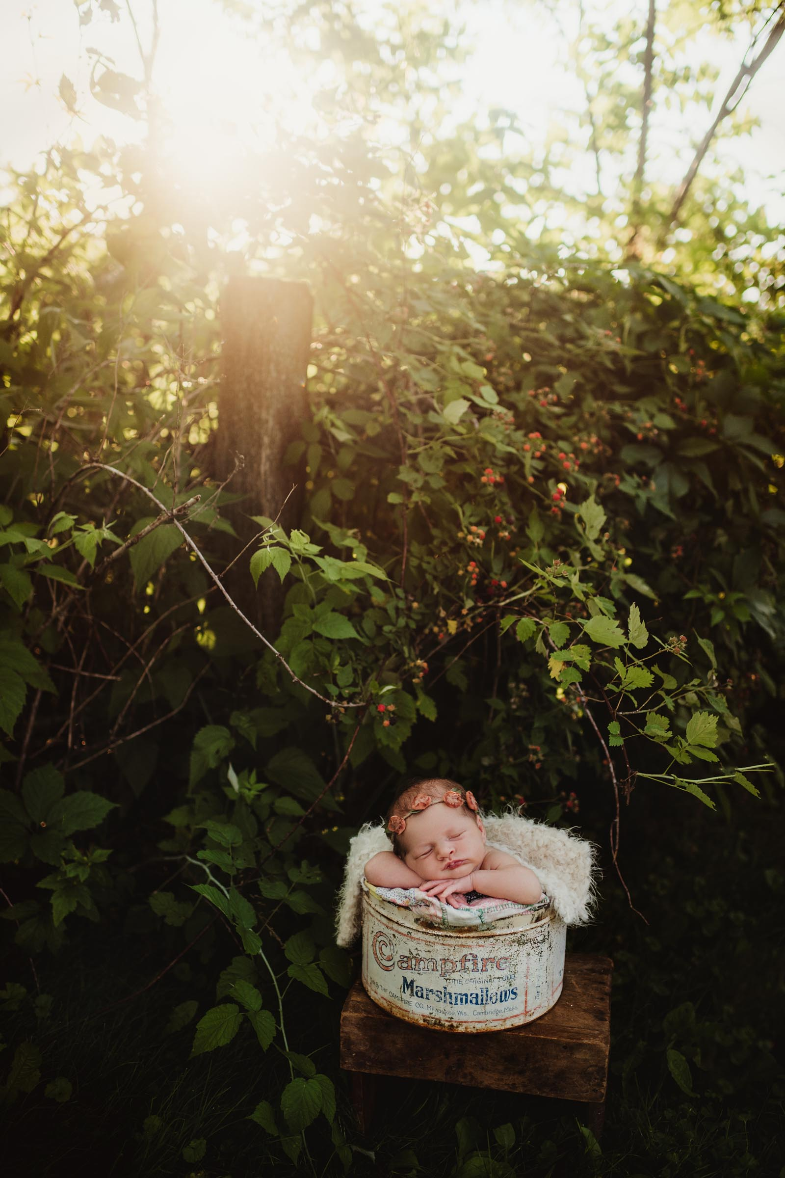 baby sleeping in a bucket at sunset outside