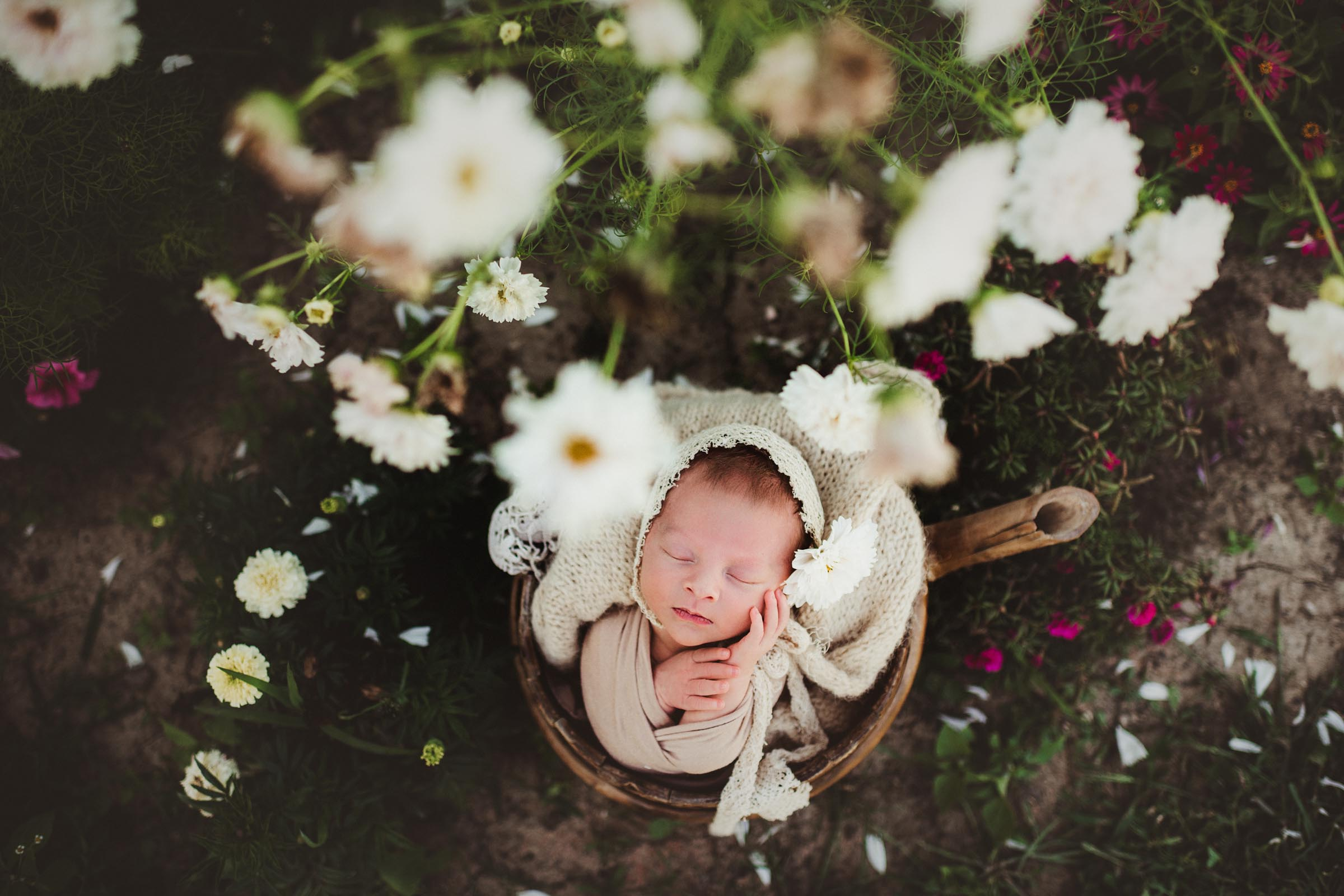 flowers surround a newborn baby sleeping outiside