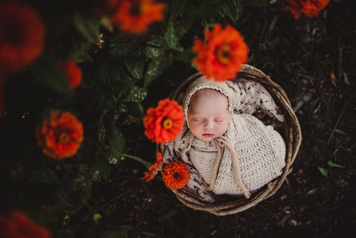 newborn wrapped in a bucket outdoors by poppy flowers