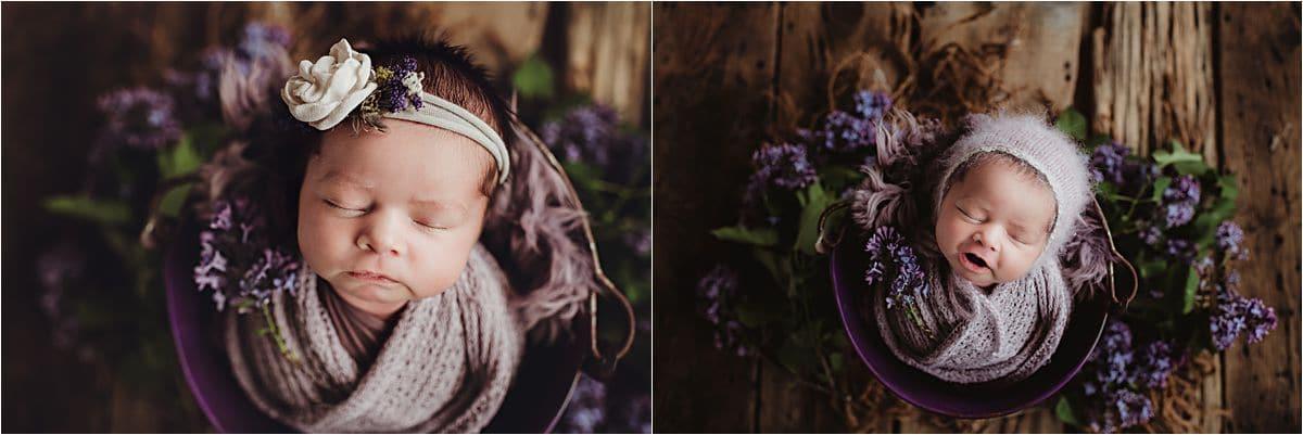 Floral Newborn Session Purple Flowers