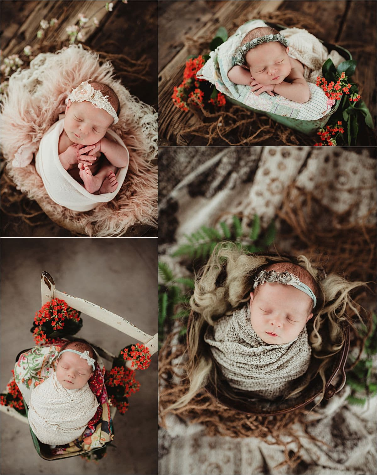 Newborn Spring Session with Flowers