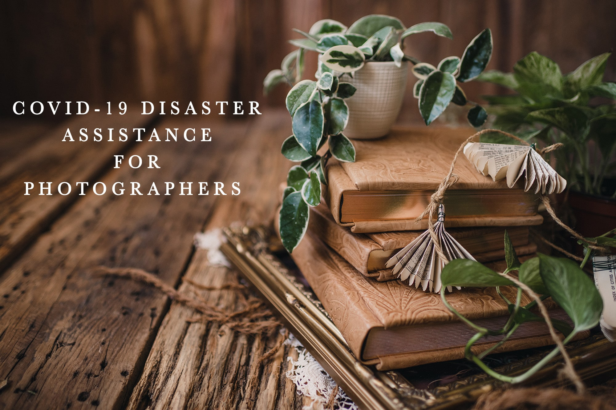 Covid-19 disaster assistance for photographers