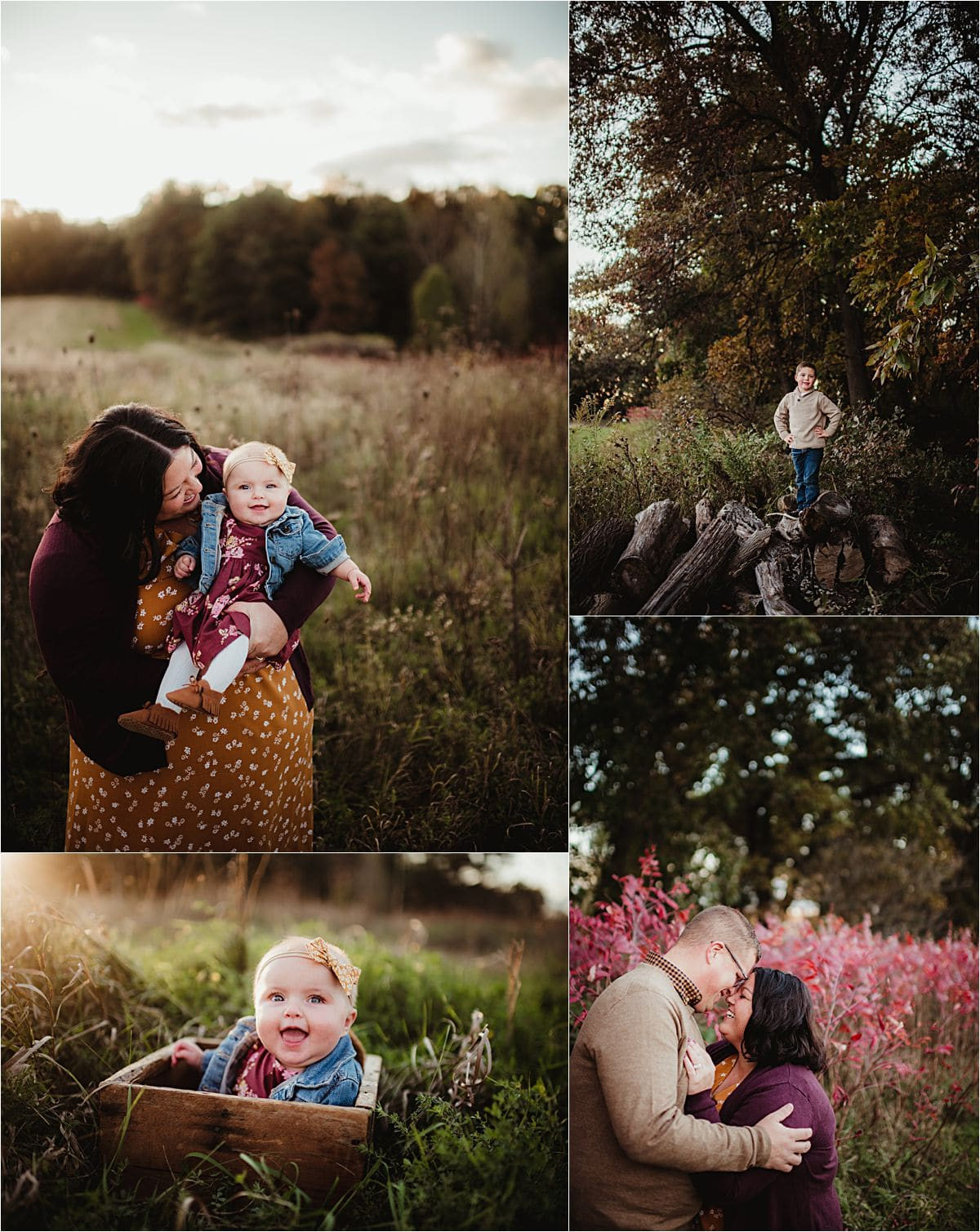 Fall Family Session in Field Collage