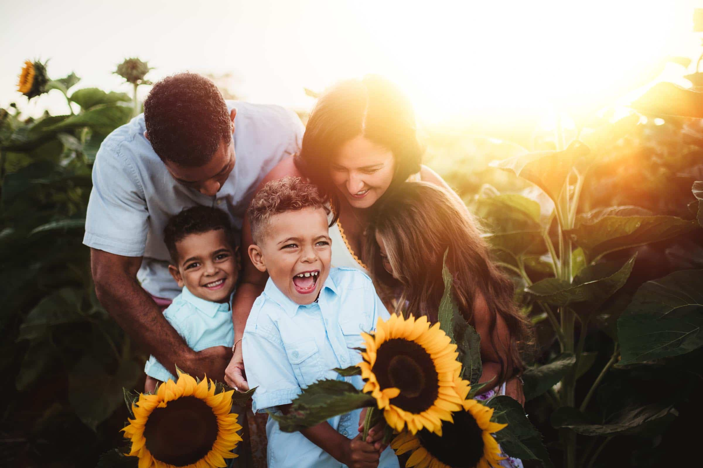 Family in Sunflowers at Sunset