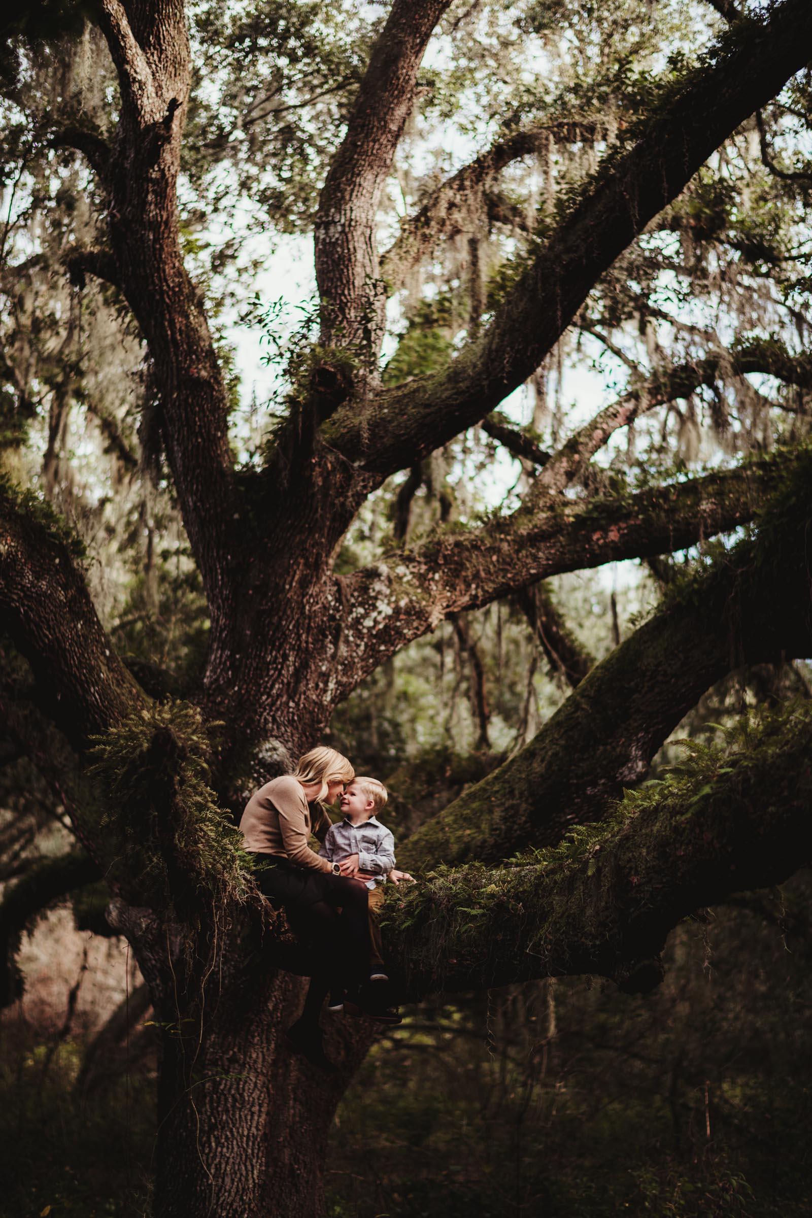 Kids in Big Tree