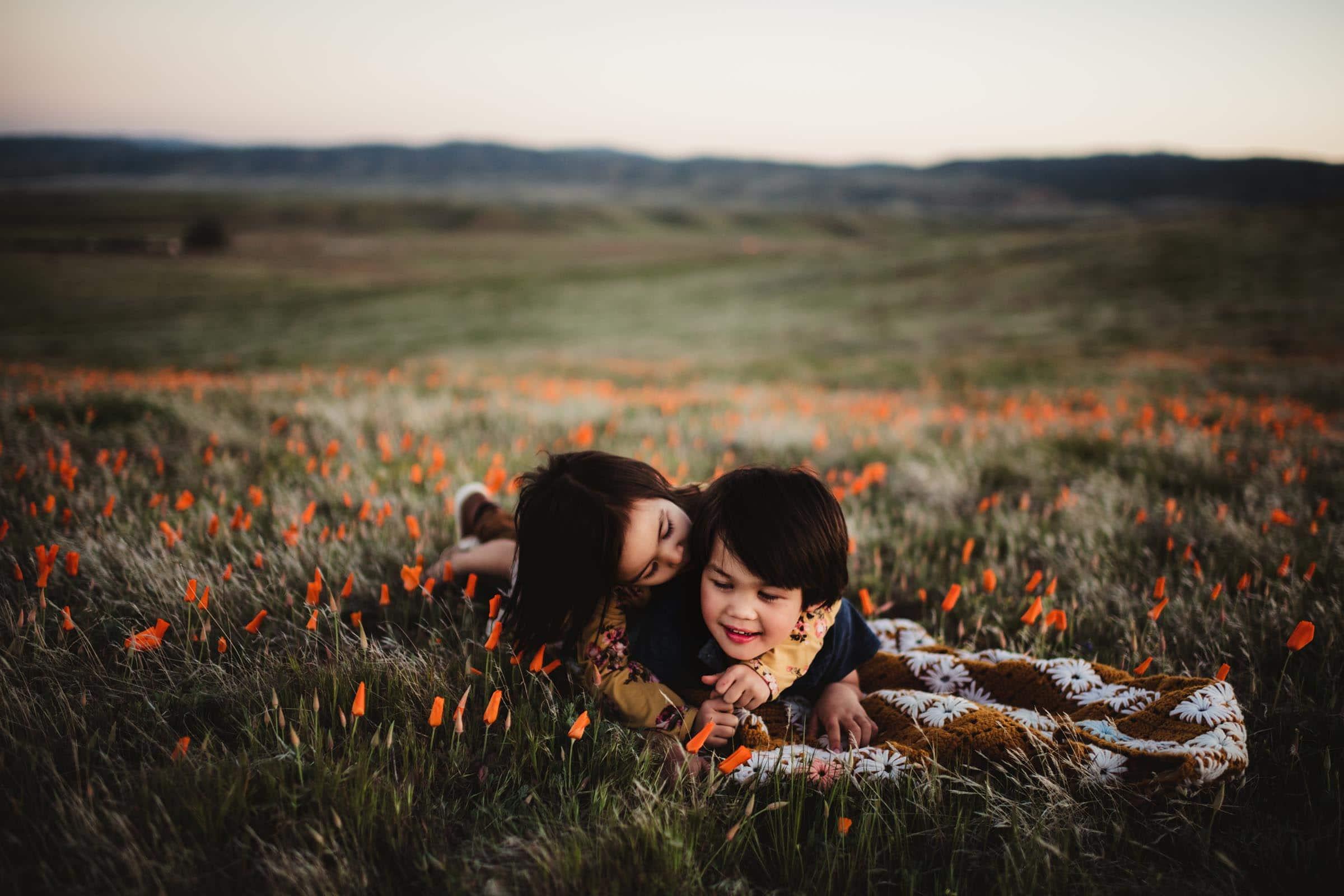 Little Boy in Orange Flower Field