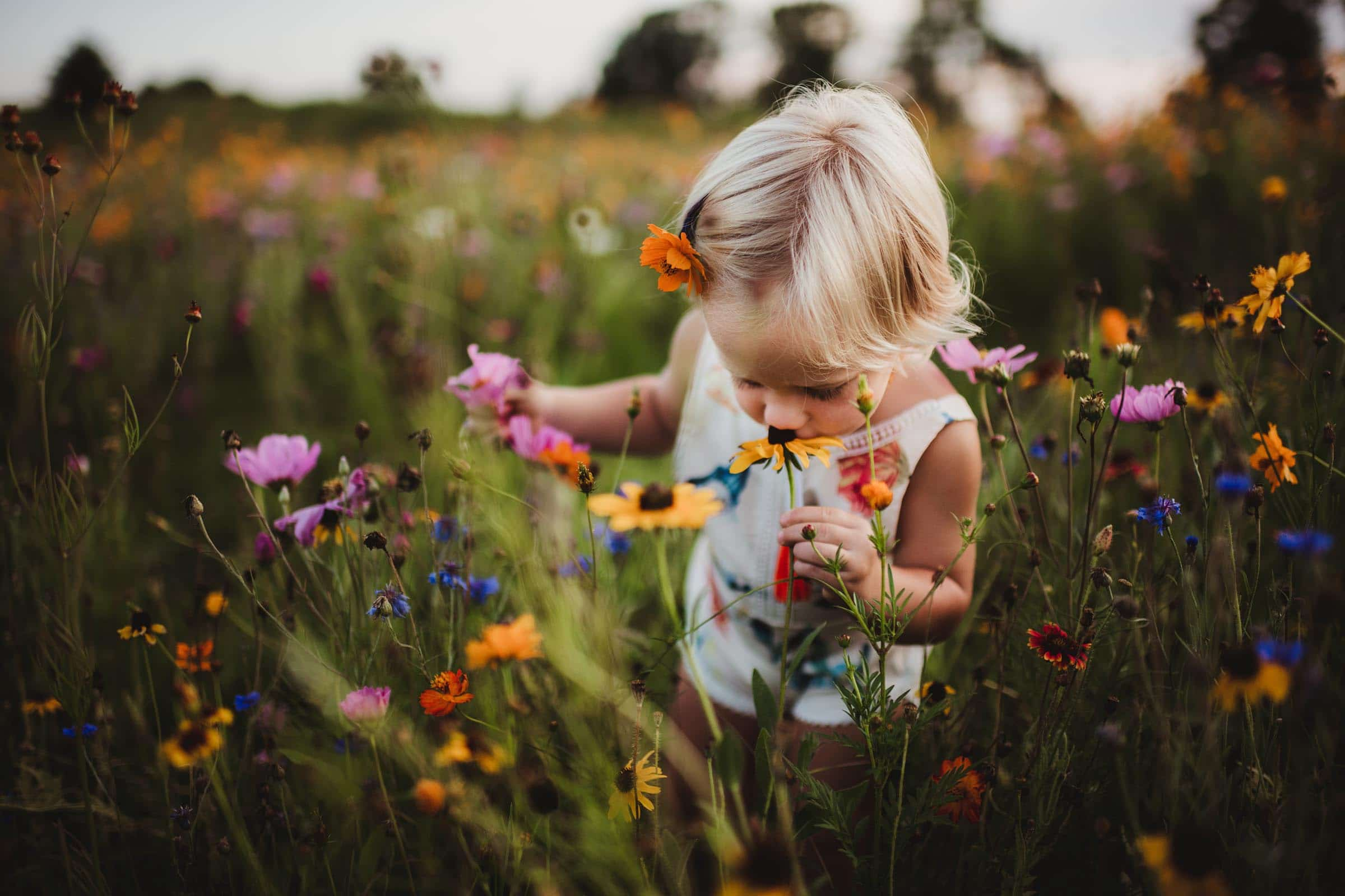 Little Girl Smelling Wildflowers