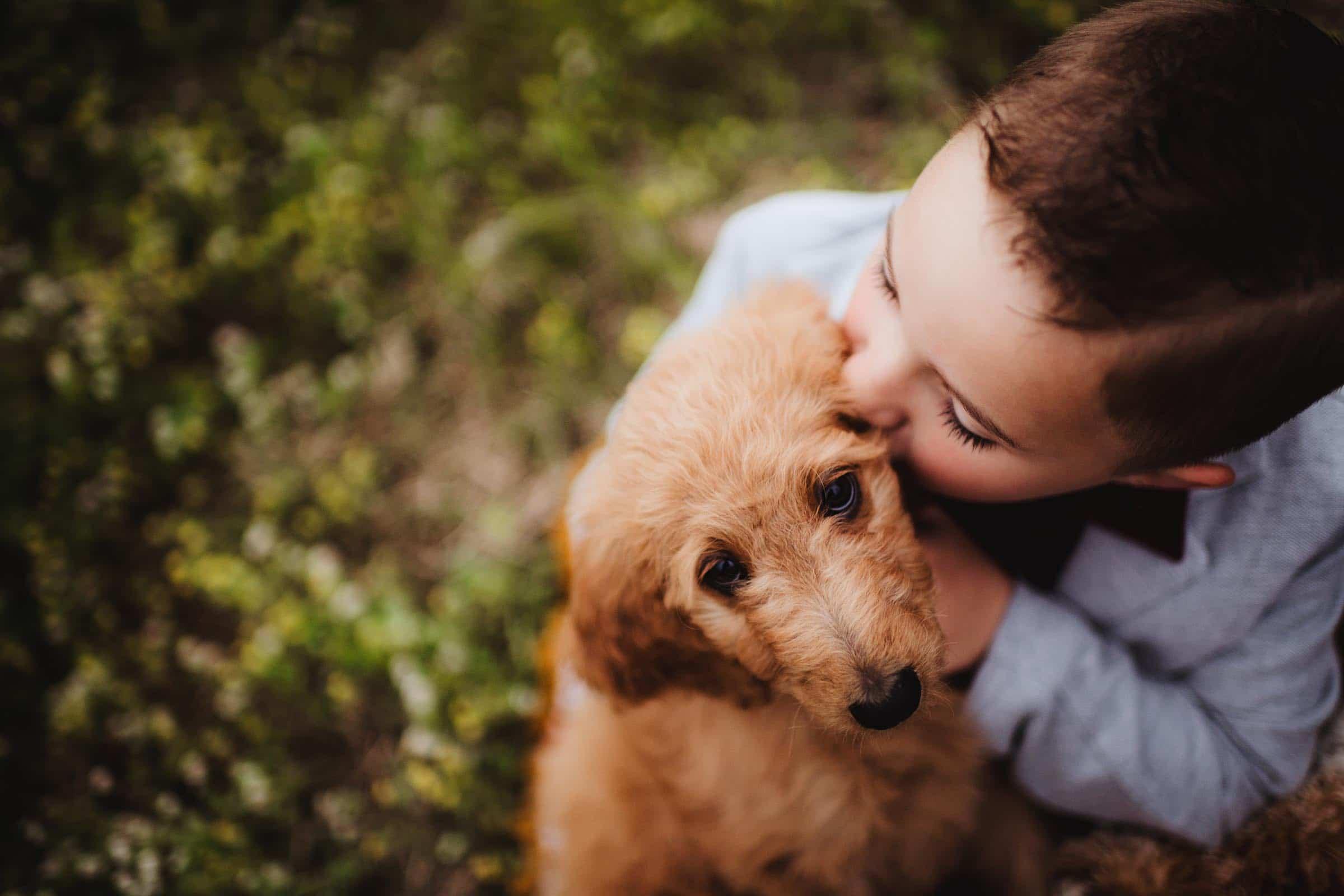 Little Boy Kissing Dog