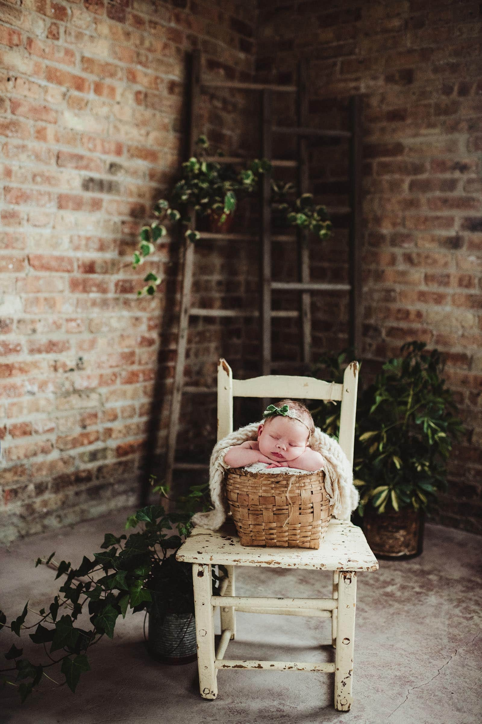 Newborn in Basket on Chair