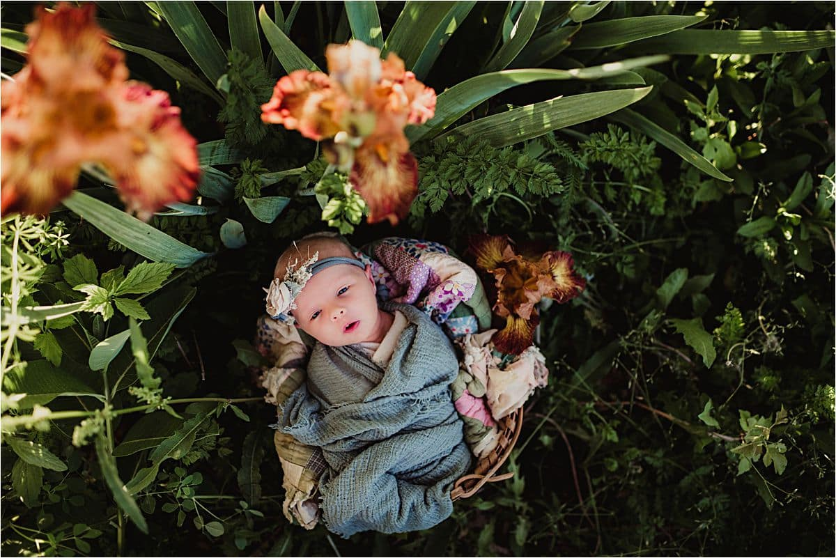 Newborn Girl in Nature