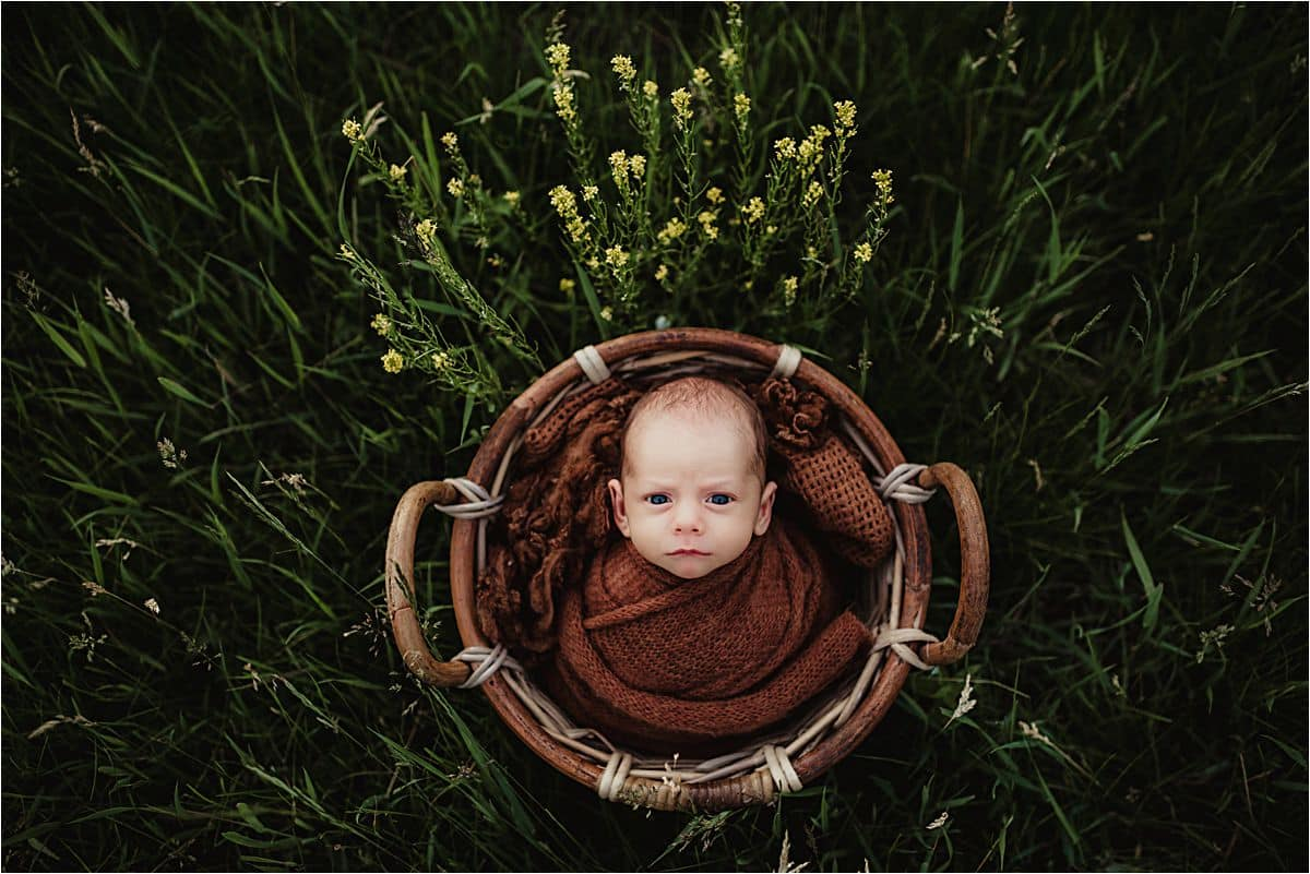 Awake Newborn in Basket