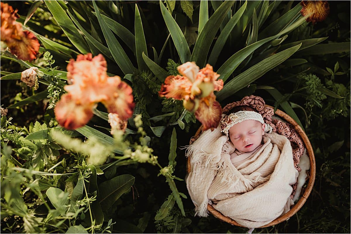Newborn in Orange Flowers
