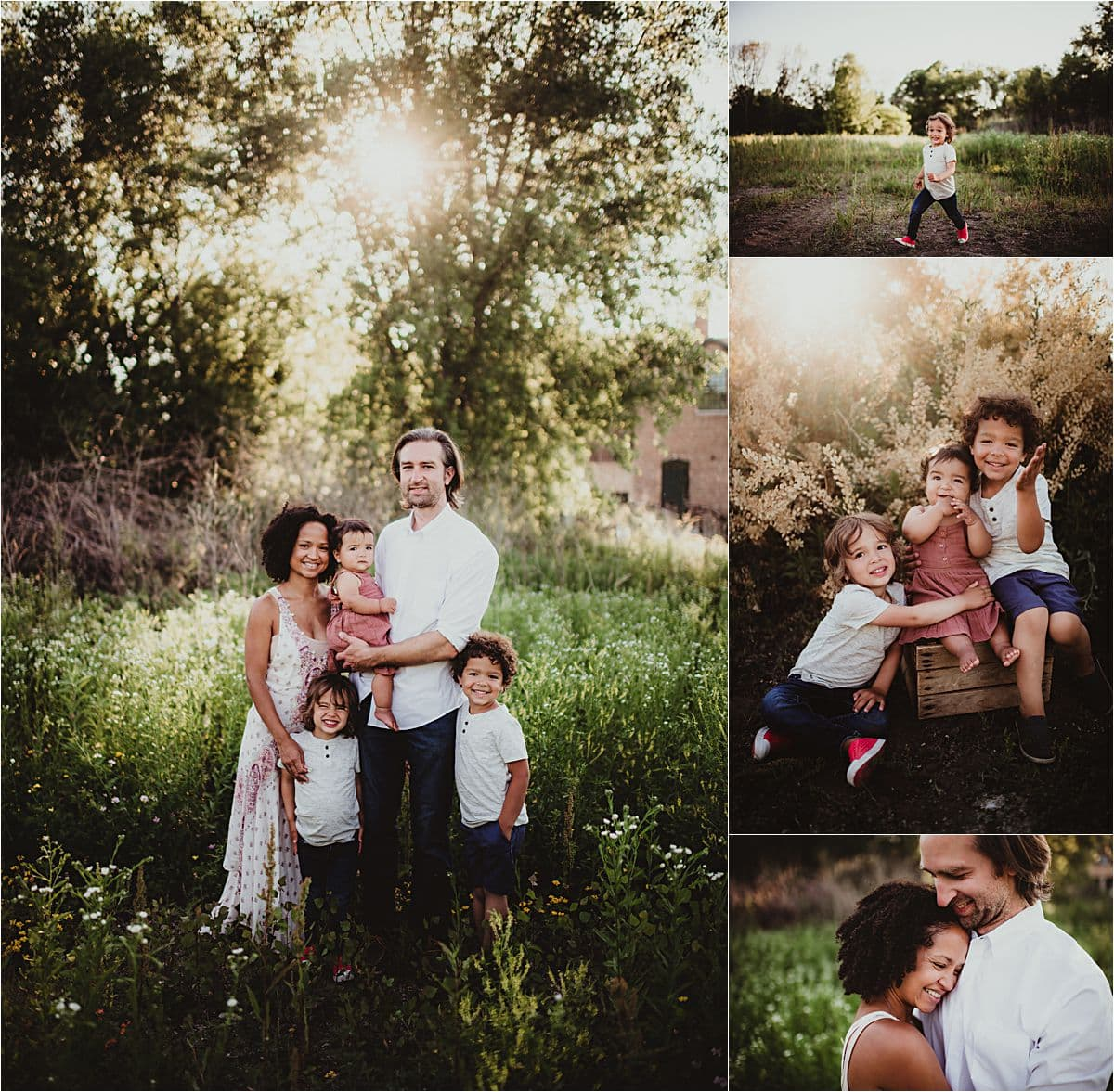 Urban Flower Field Session Collage Family at Sunset