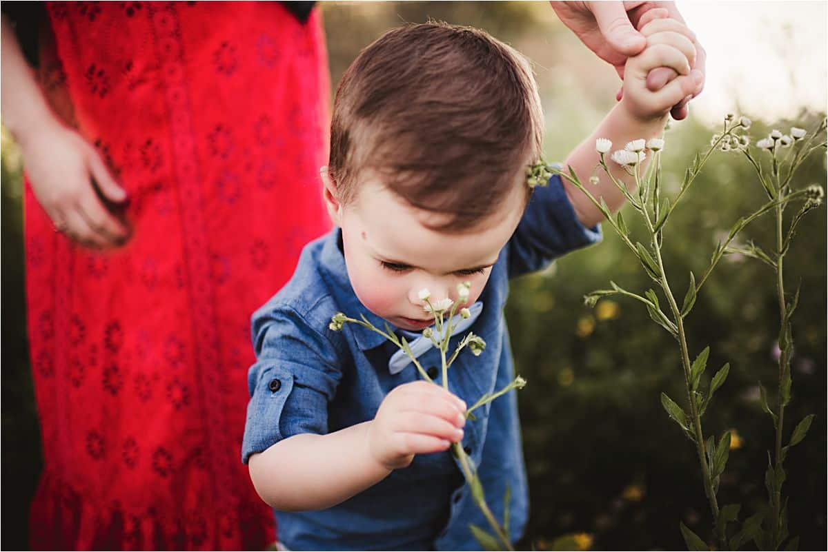 Little Boy Sniffing Flower