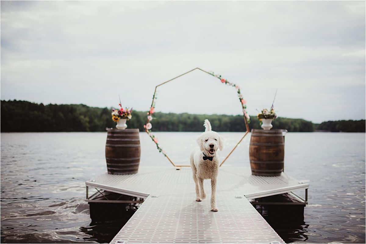 Lakefront Private Residence Wedding Dog on Dock