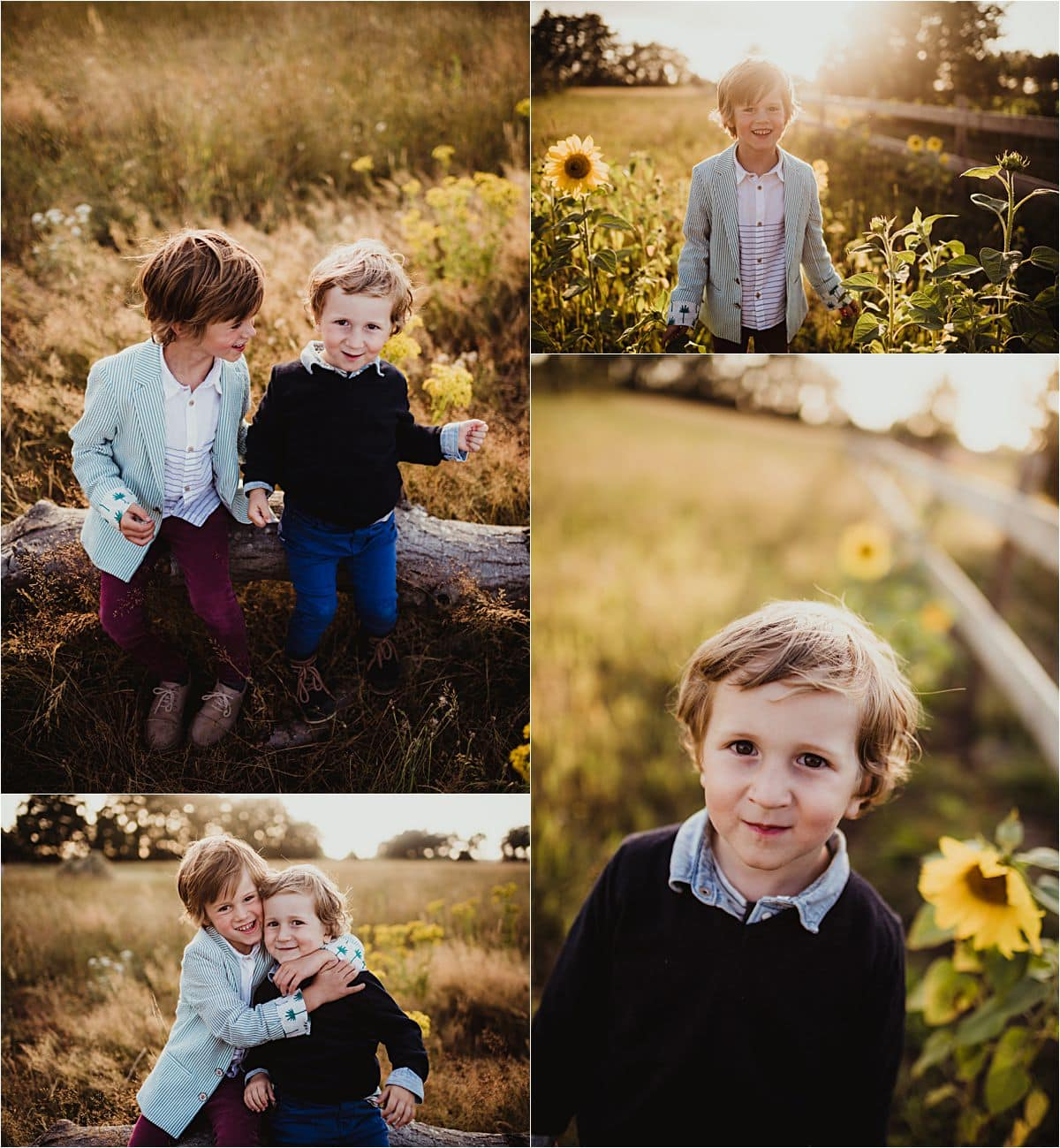 Sunset Field Family Session Brothers in Sunflower Field