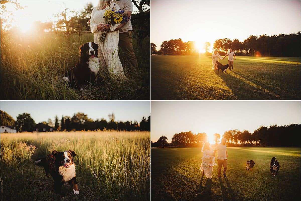 Sunset Portrait Session with Pets Couple in Field with Dogs