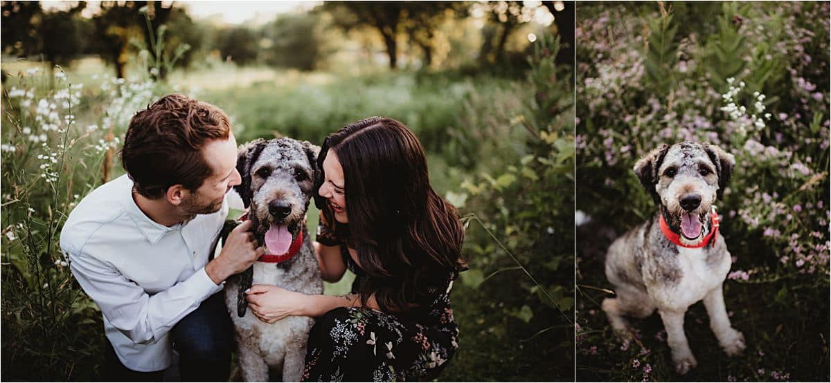 Summer Engagement Session Couple with Dog