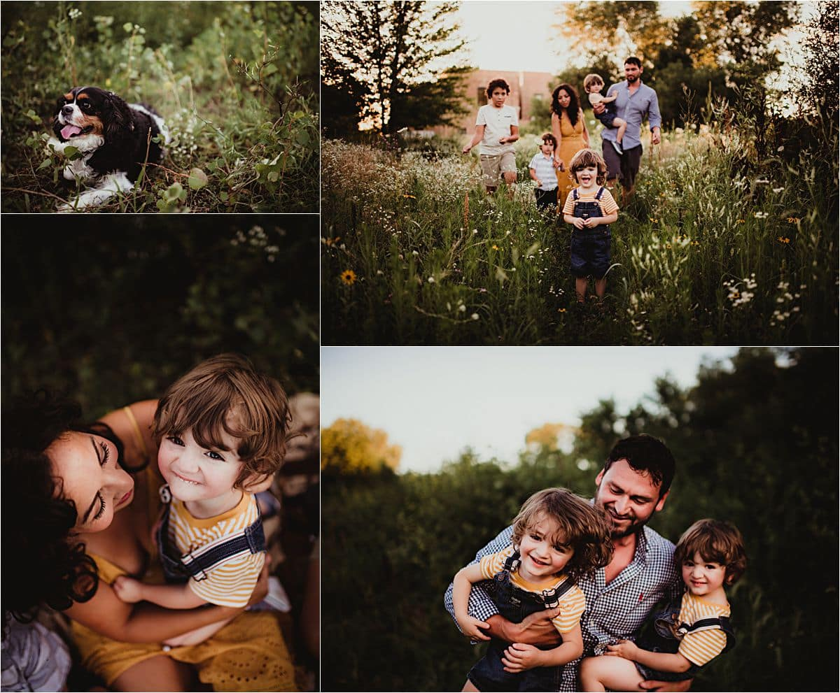 July Sunset Family Session Collage Family in Field