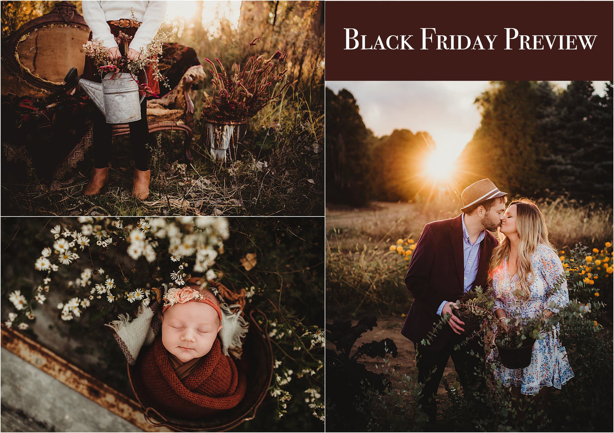 Black Friday Preview Twig and Olive