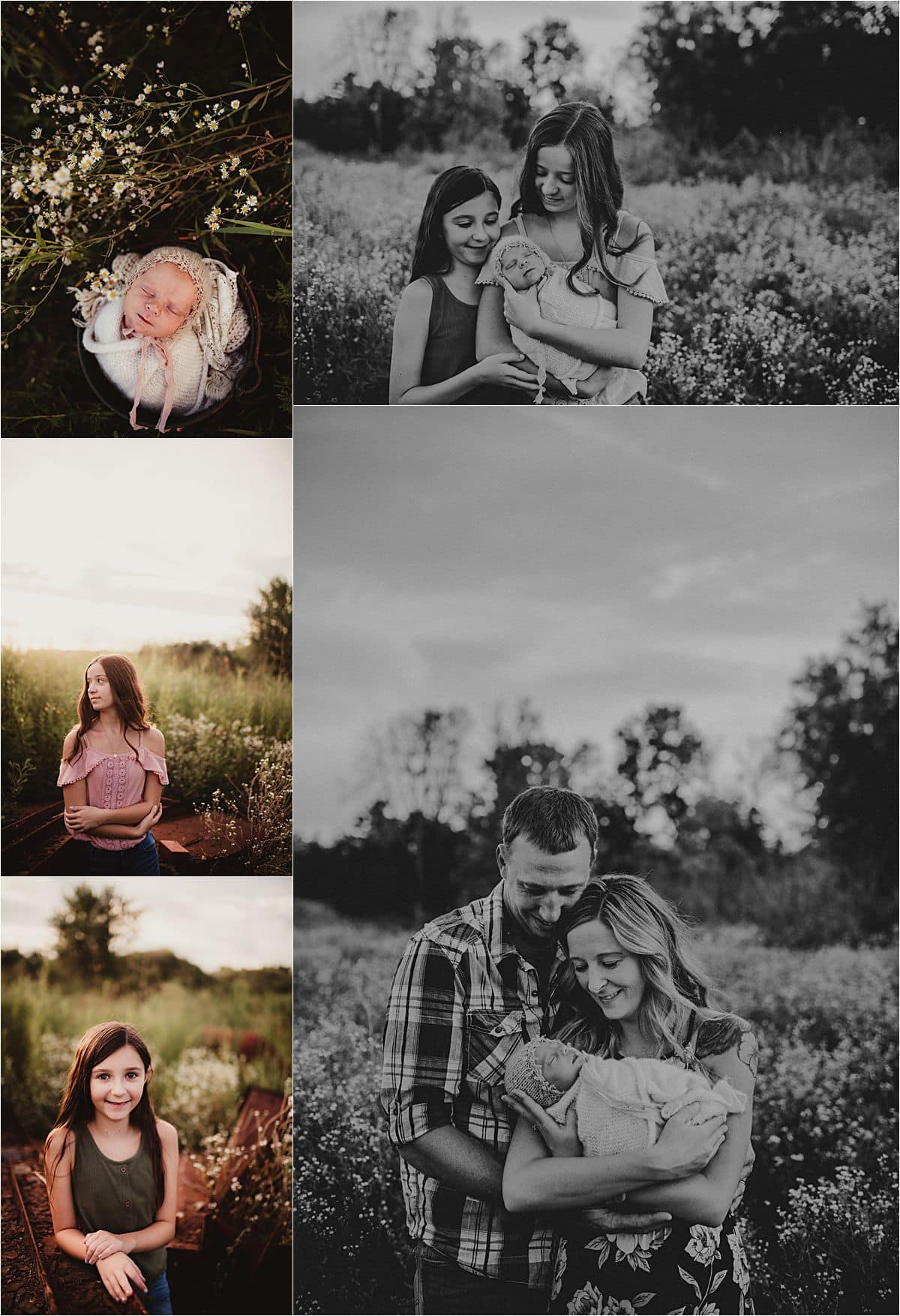 Newborn Family Wildflower Session Collage Family with Newborn