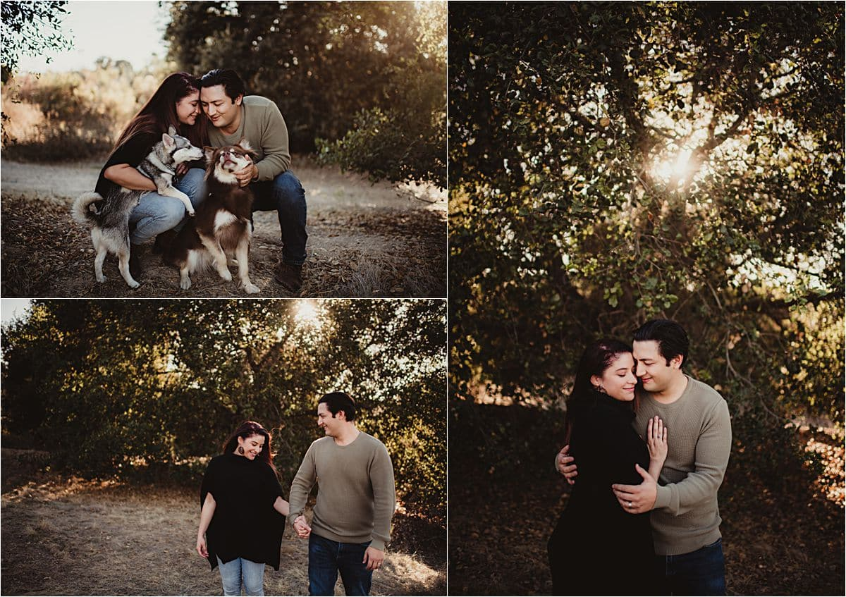 Portrait Session with Dogs Collage Couple