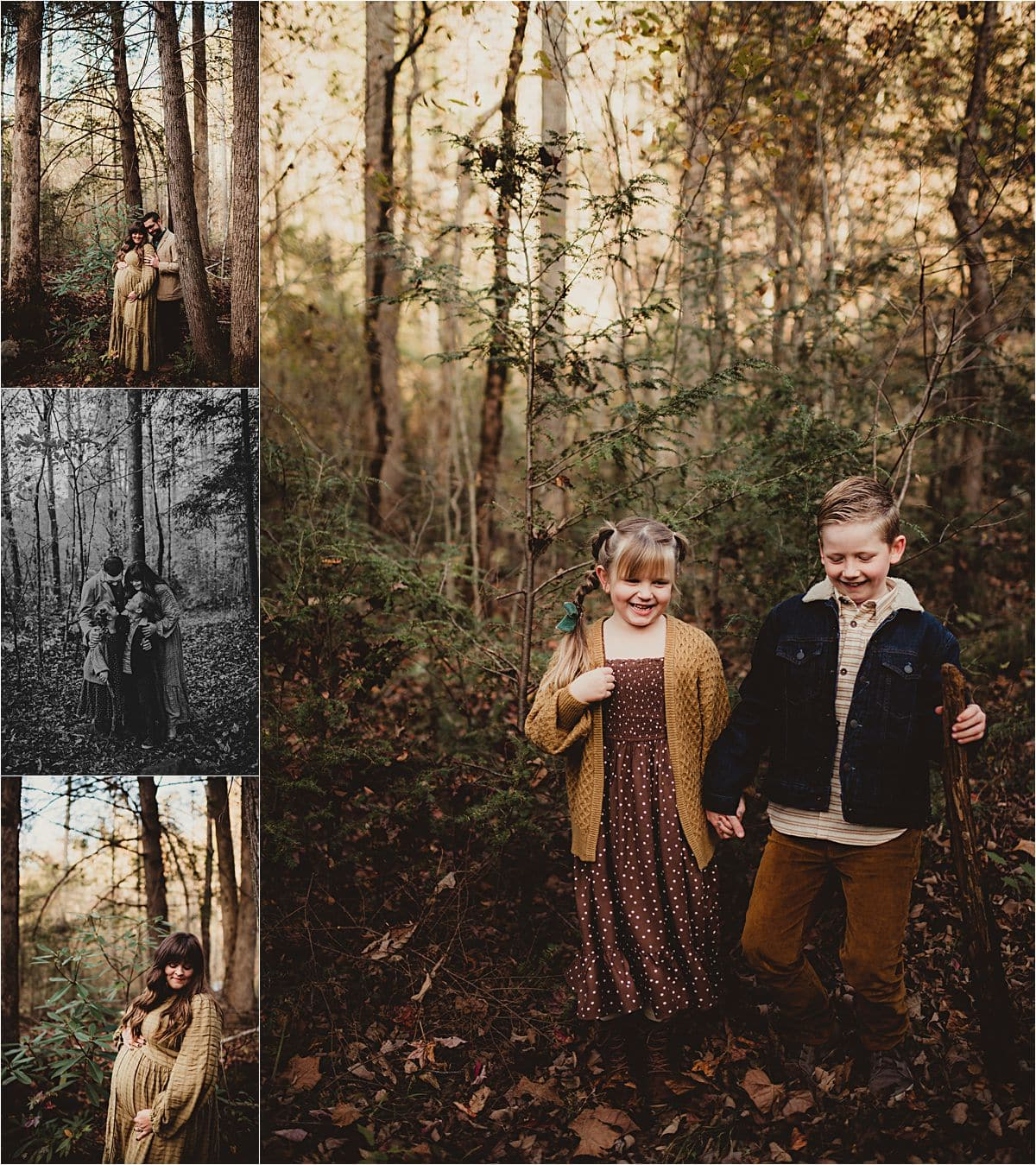 Wooded Valley Family Session Collage in Woods