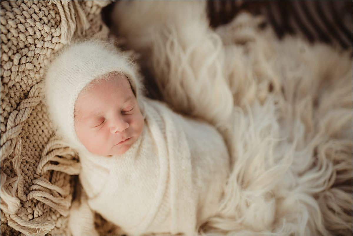 Newborn in Fuzzy White