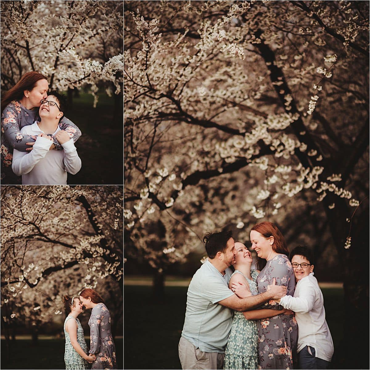 Collage Family Cherry Blossoms