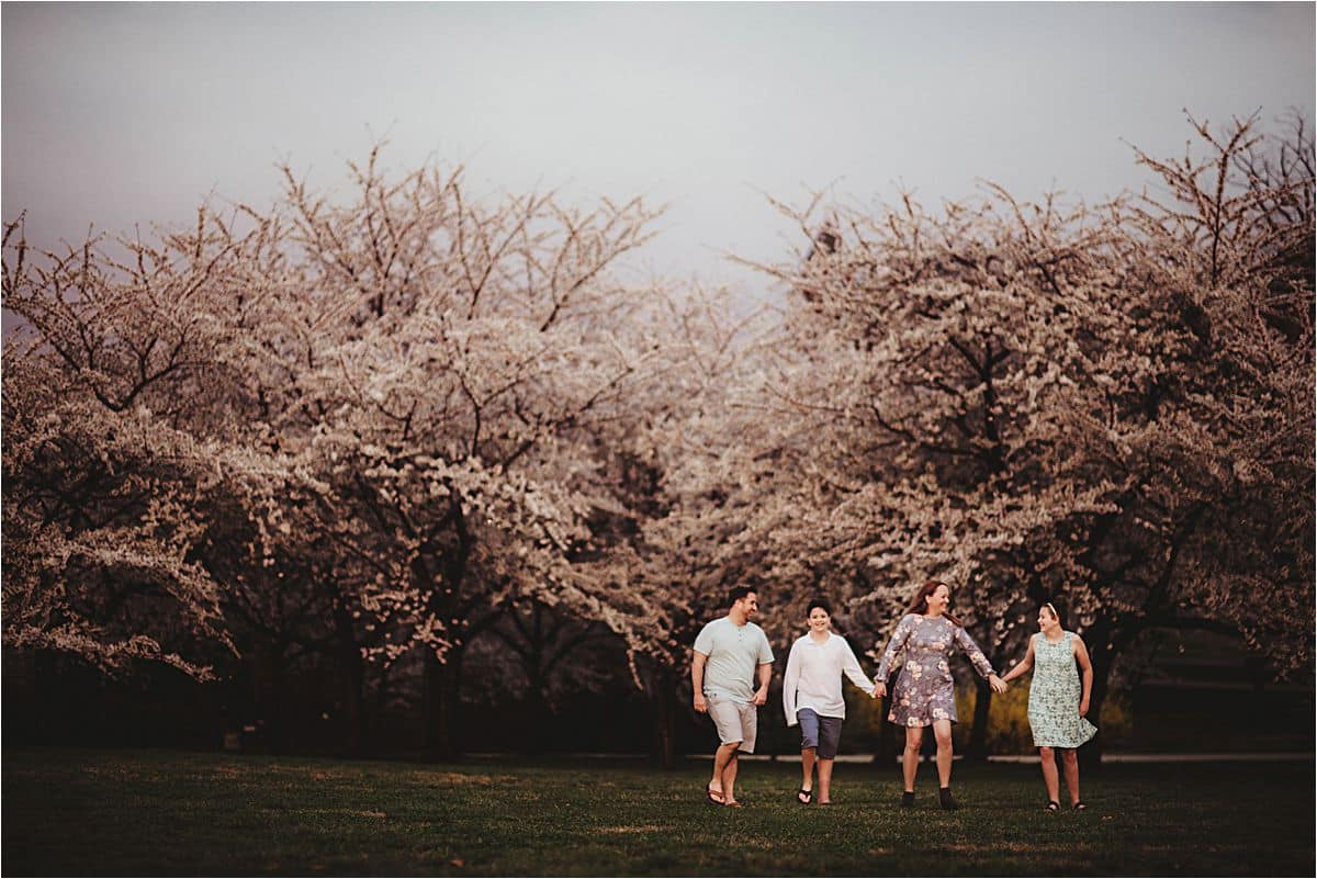 Family Walking Cherry Blossoms