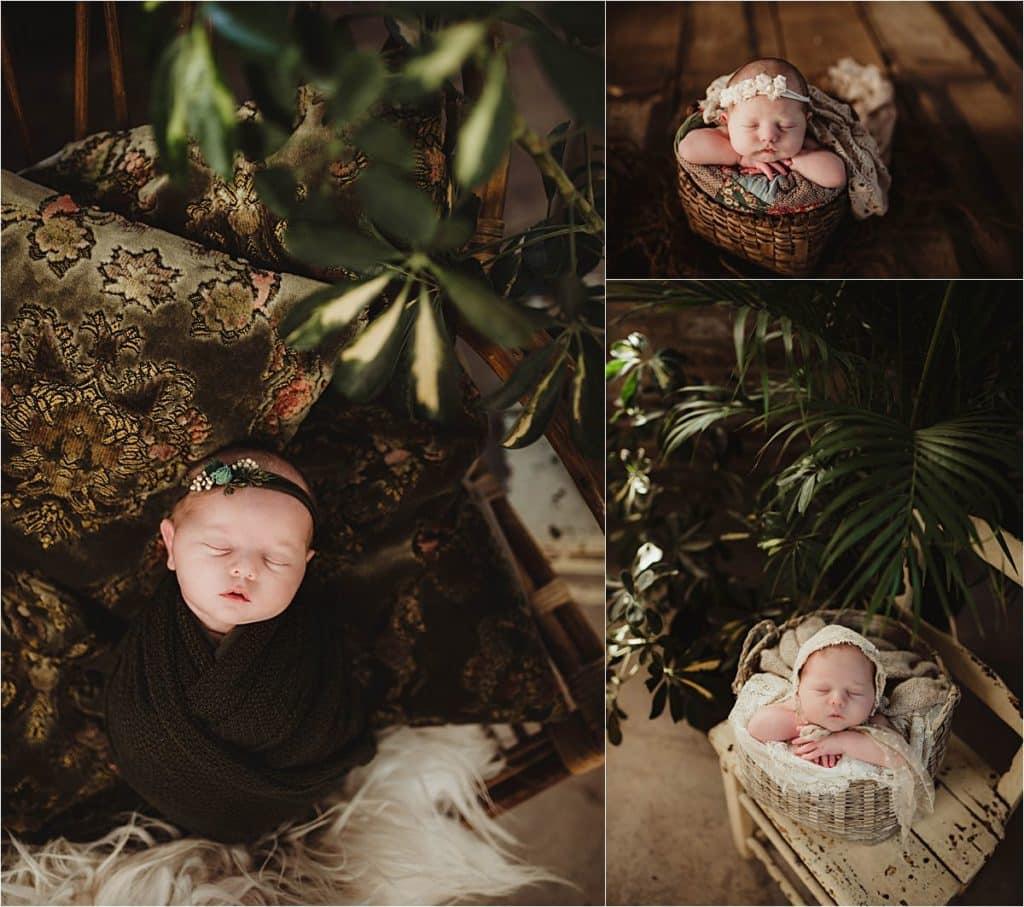 Spring Botanical Newborn Session Newborn with Greenery