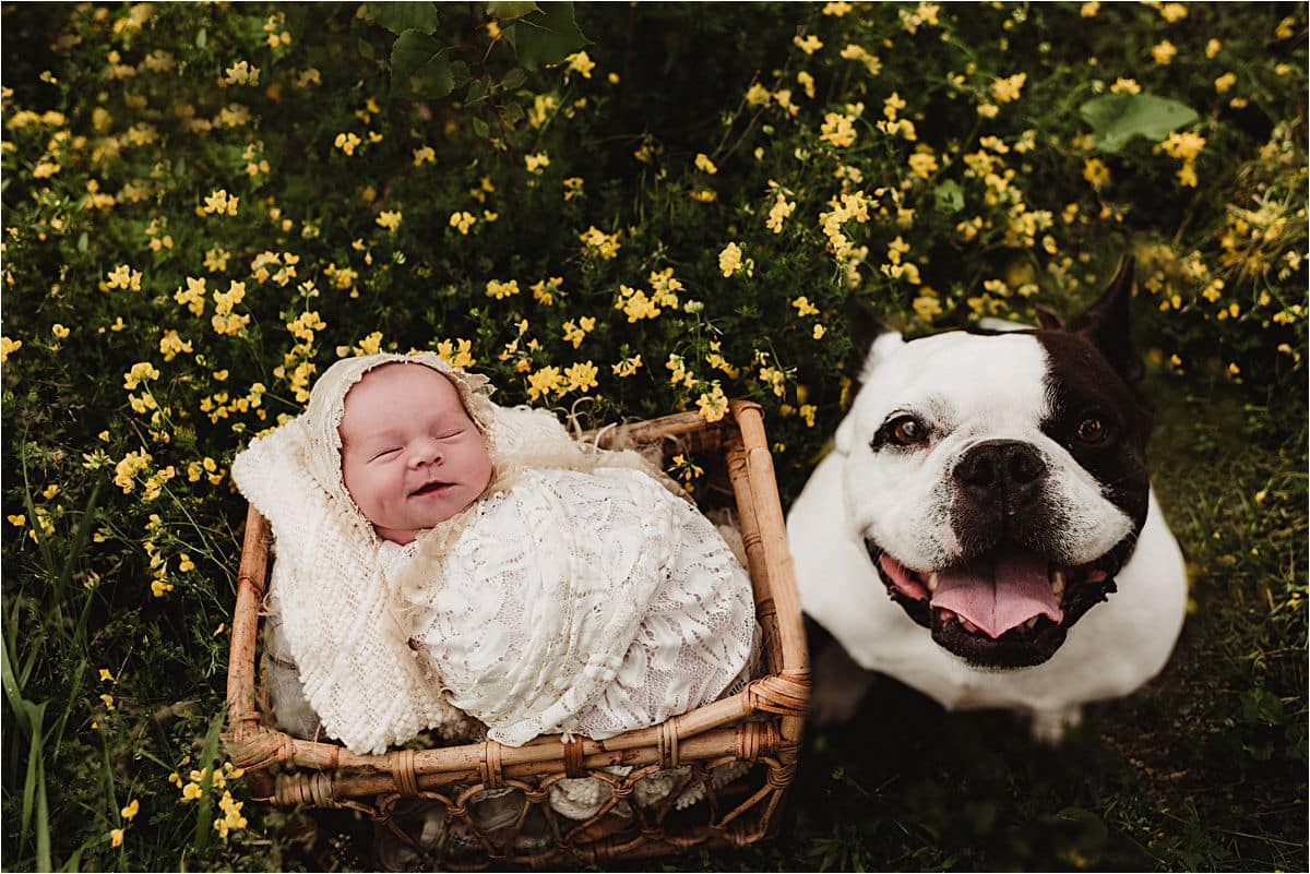 Newborn Girl with Dog