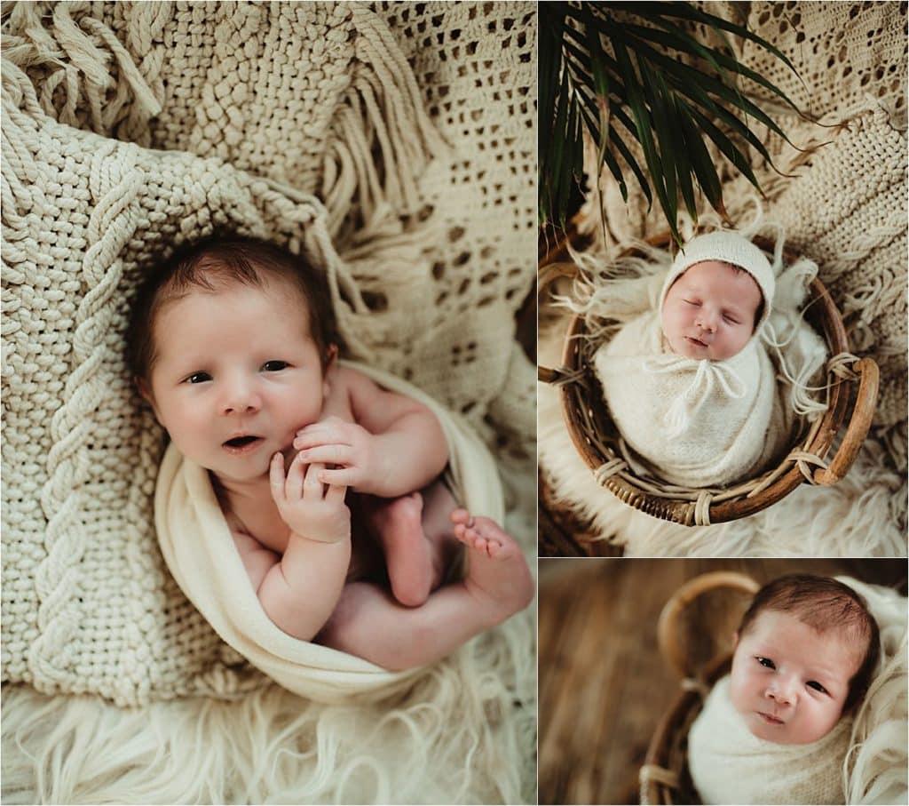 June Newborn Session Collage Newborn in White