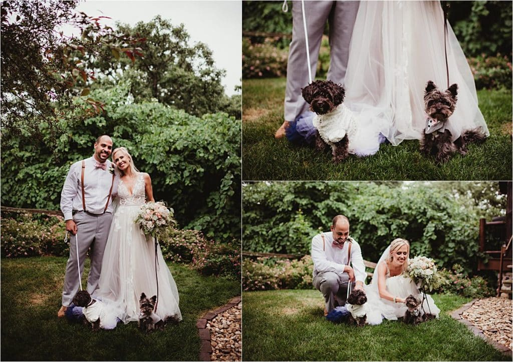 Stormy Skies Summer Wedding Couple with Dogs