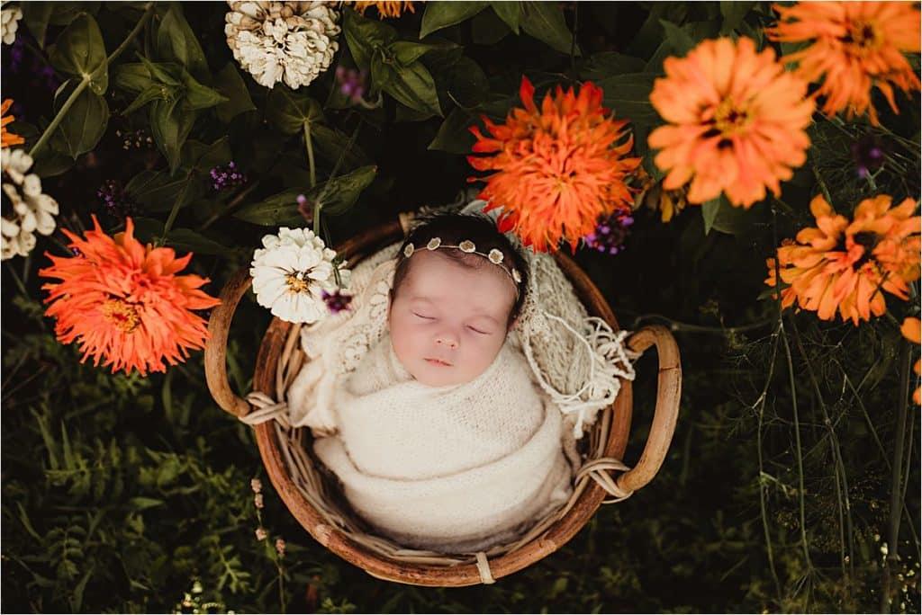 Flower Garden Newborn Session in Orange Flowers
