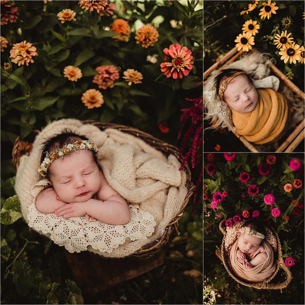 Collage Newborn Girl in Flowers