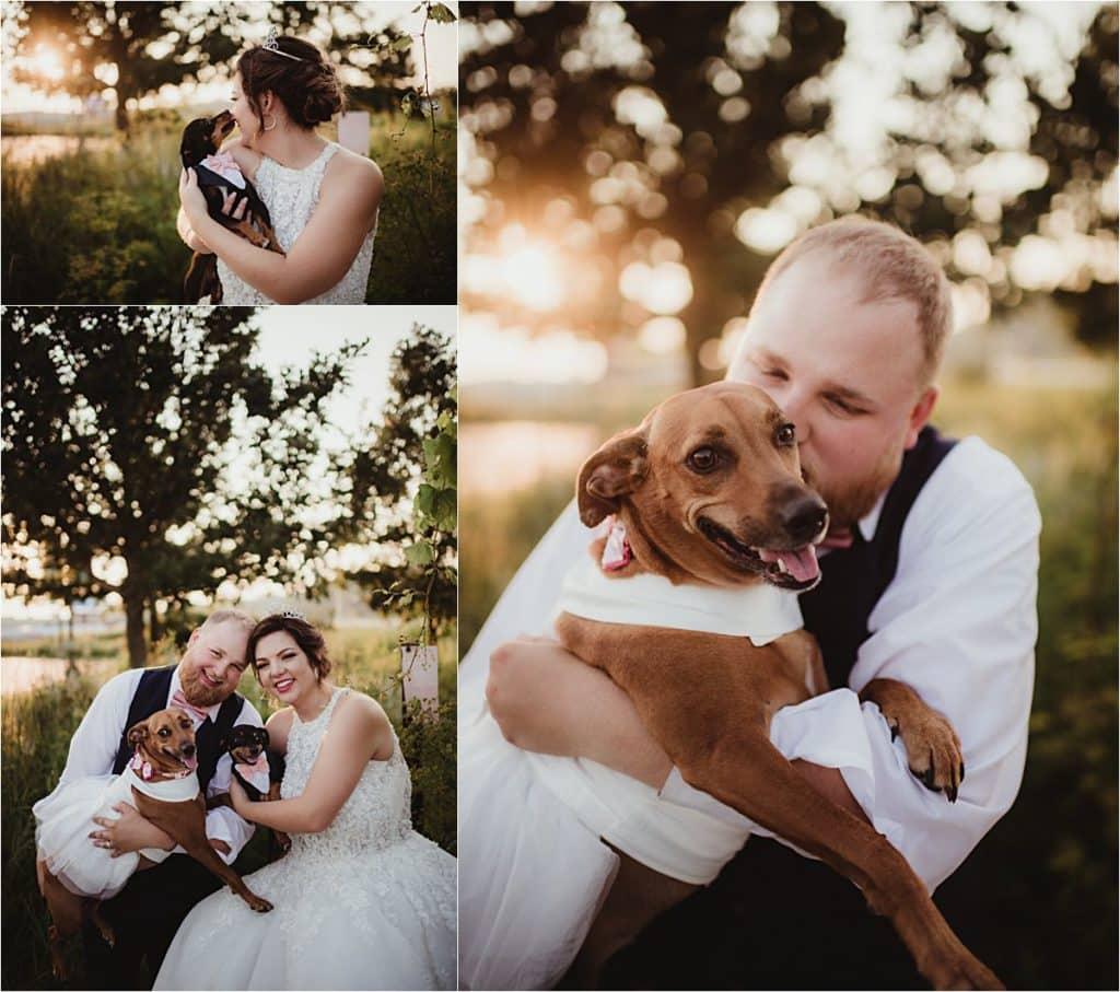 Western Wisconsin Summer Wedding Bride Groom with Pets